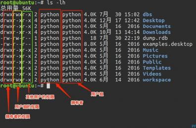 Linux 目录与权限详解